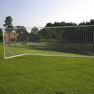 European Practice Goals