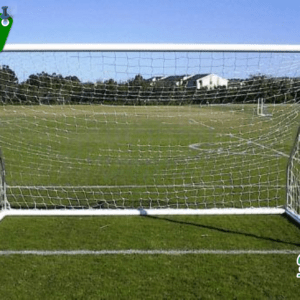 Park Goal - Free Shipping