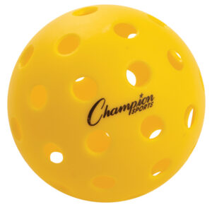 Champion Recreational Outdoor Pickleball